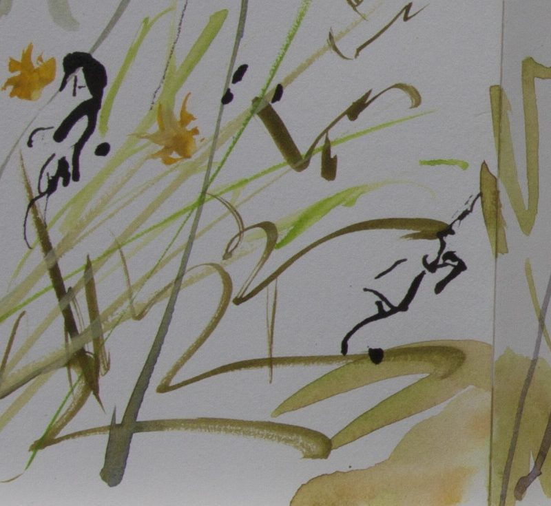 016 Concertina Book,detail  Dove Cottage Garden